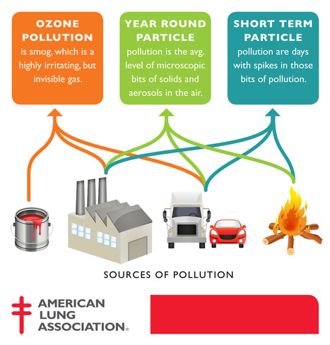 What Cities Have the Most Polluted Air? | global citizens | Scoop.it