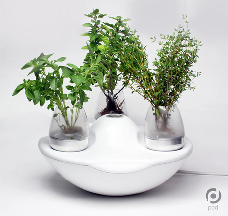 Grow and Share Produce With Pod Indoor Garden | Urban Gardens | Scratch Cooking | Scoop.it