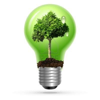 Développement durable en entreprise : faire le tri entre marketing et engagement | Developpement durable & marketing | Scoop.it
