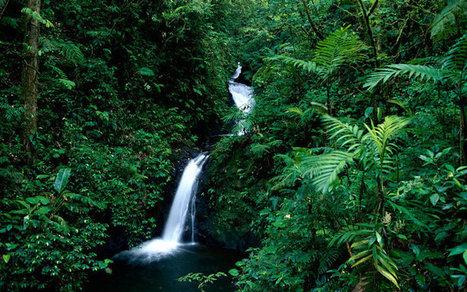 Latin American Travel Guide   Latin America - News, Travel, Lifestyle   Scoop.it