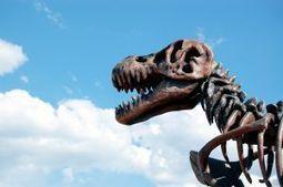 AM:TICE: Le TBI deviendra-t-il un dinosaure avant son temps? | TELT | Scoop.it
