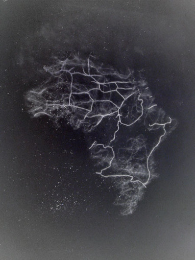 Borders, Simona Koch | Mon mémoire sur la frontière et la ligne. | Scoop.it