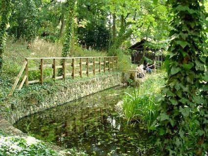 Un jardin sauvage en plein cœur de Paris !   Jardins urbains   Scoop.it
