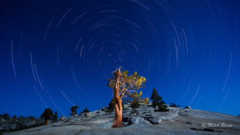 The World Spins Around a Lonely Tree Late at Night | Travel Photographs to Amaze You | Scoop.it