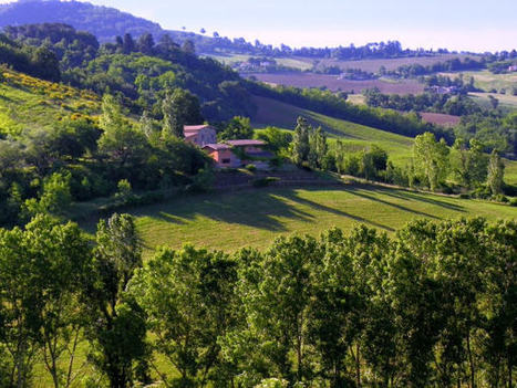 Why you should visit Le Marche, Italy - GoLearnTo.com   Hideaway Le Marche   Scoop.it