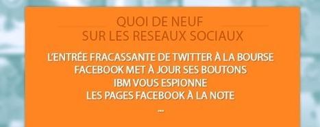 Ce qu'il faut savoir sur les réseaux sociaux : Twitter prend son envol, Facebook renouvelle ses boutons, IBM vous espionne…   benoitvallon   Scoop.it