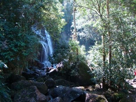 The Magic of Itatiaia National Park - Rio de Janeiro - Brazil. - Brazil Road Trips   Adventures in Life   Scoop.it