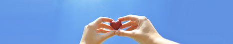 The Different Types Of Heart Doctors | A Cardiologist Takes Care Of The Heart | Scoop.it