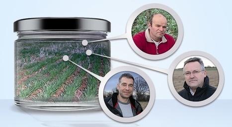 Agriculture de conservation - Des agriculteurs engagés pour leur sol ... - Terre-net | Agriculture de Conservation des Sols | Scoop.it