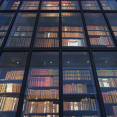 Libraries: Where It All Went Wrong | AJCann | Scoop.it