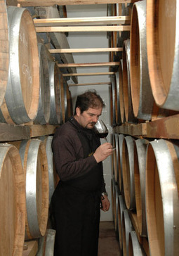 Wines and people of le Marche: Cantine Saputi, Colmurano | Wines and People | Scoop.it