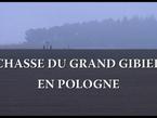 Le film Seasons gratuit du mois: Chasse du grand gibier en Pologne   chasse   Scoop.it