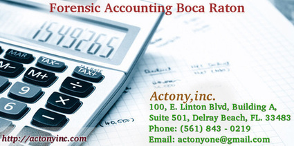 Forensic Accounting Boca Raton | CPA and Tax Consulting | Scoop.it