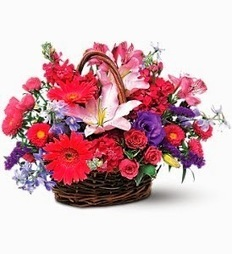Send Elegant and Fresh and Flowers Online   Flower delivery in Toronto   Scoop.it