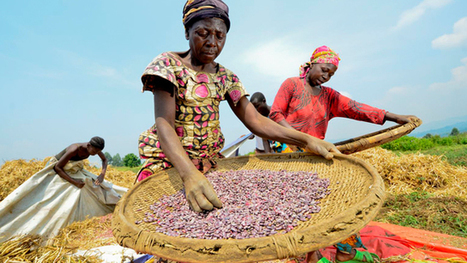 Women and Biodiversity Feed the World, Not Corporations and GMOs   BillMoyers.com   Food issues   Scoop.it