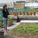 potagers+toits+paris