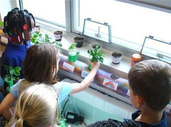 Tommie Brown Academy Receives Aquaponics Systems | The educational synapse | Scoop.it