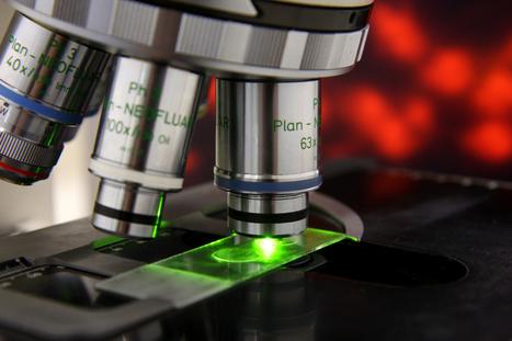 Nortec Laboratory Information System | LIS | Nortec EHR | Health Care | Scoop.it