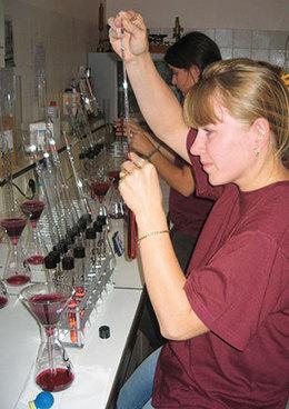 Economie - Vins de Bordeaux : Une année 2012 de bonne facture | Le vin quotidien | Scoop.it