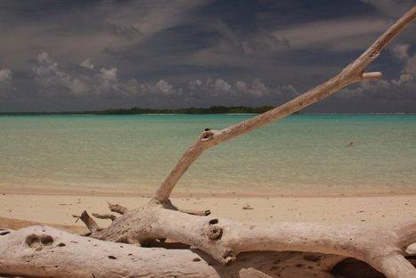 Touring Koror, Palau - Dave's Travel Corner | Visit Palau | Scoop.it