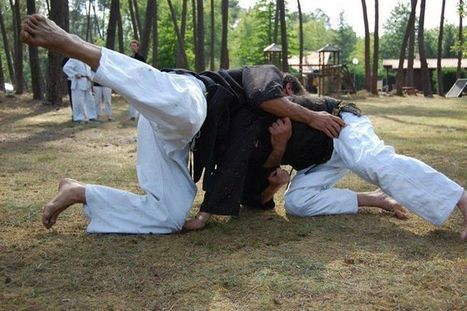 Martial Arts System | Communiquaction | Communiquaction News | Scoop.it