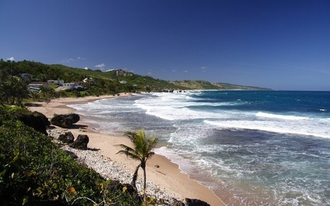 The best surfing in the Caribbean - Telegraph.co.uk | Bodyboarding UK | Scoop.it
