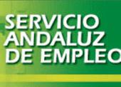 Ex asesores del Servicio Andaluz de Empleo denuncian 'pucherazo ... - Diariocrítico.com | servicio andaluz de empleo | Scoop.it