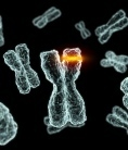 Past 5,000 years prolific for changes to human genome | Unknown Knowledge | Scoop.it