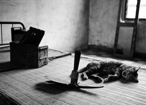 Tuol Sleng Genocide Museum | Izzi:Genocide | Scoop.it