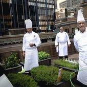Chefs d'Etat : toqués au sommet - Le Monde | TheVeryGoodNews | Scoop.it