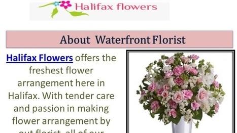 Florist In Halifax Nova Scotia | Waterfront Florist | Scoop.it