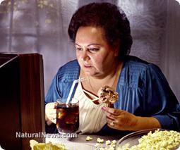 Junk food can be as addictive as heroin | Junk Food in Schools  Catalina.A Joaquin.C Nassar.H | Scoop.it