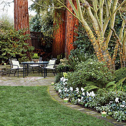 17 quick winter garden spruce-ups | Garden Ideas by Team Pendley | Scoop.it