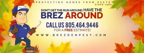 Happy Thanksgiving from Brezden Pest Control | Property Management | Scoop.it
