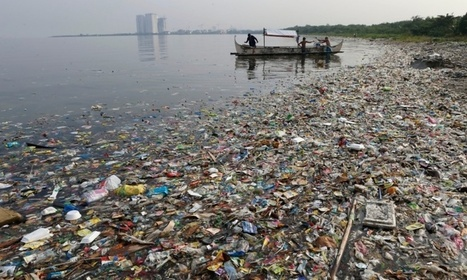 Could a circular economy save oceans from plastic waste? - live chat   Marine Litter   Scoop.it
