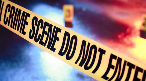 Democratic state lawmaker Creigh Deeds stabbed, son shot dead in Virginia | CultureTraits | Scoop.it
