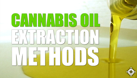 European Study: What Is The Best Cannabis Oil Extraction Method? | Entheogens & Miscellaneous | Scoop.it