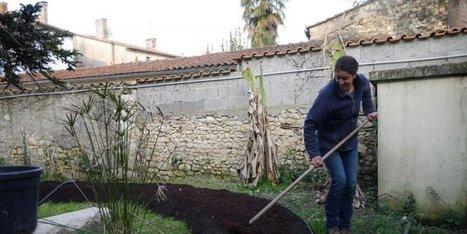 La permaculture : l'autre façon de jardiner - Sud Ouest | jardin | Scoop.it
