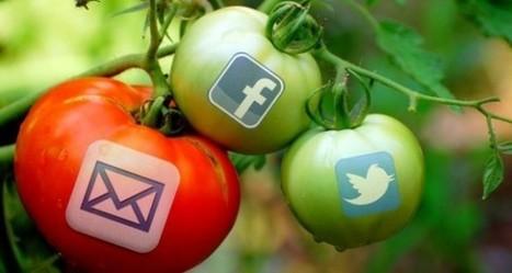 Email Marketing Still Beats Social Media Marketing | OpenView Labs | Social media | Scoop.it