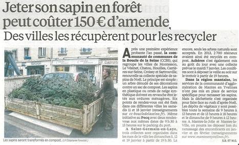 Collecte des sapins de Noël   Croissy sur Seine   Scoop.it