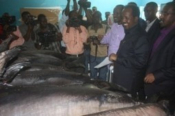 "President of Somalia ""puts the world on notice"" over illegal fishing ... 