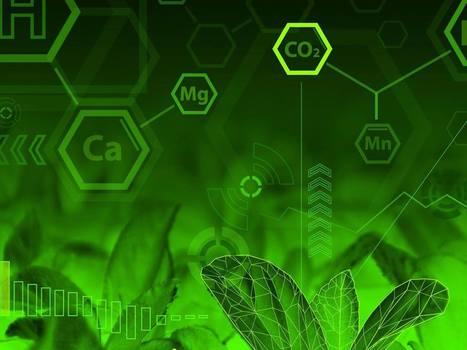 Chimica verde, in Italia il primo impianto industriale al mondo a produrre biobutandiolo - Greenreport: economia ecologica e sviluppo sostenibile | Polesine | Scoop.it