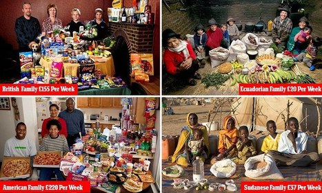 The great global food gap: Families around the world photographed with weekly shopping as they reveal cost ranges from £3.20 to £320 | Taloushistoria | Scoop.it