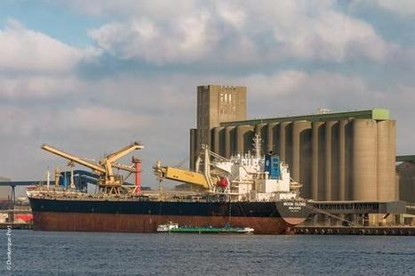 Twitter / DunkerquePort: #DunkerquePort, First french ...   FIRST FRENCH GRAIN SHIP TO CHINA FOR 9 YEARS   Scoop.it