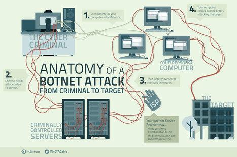 Anatomy of a Botnet | Informática Forense | Scoop.it