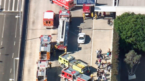 Shooting Shuts Down LAX Airport; DFW Airport & Airlines Impacted - CBS 11 | Airline and Airport Operations | Scoop.it
