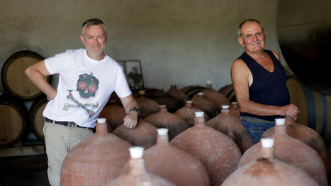 Muscadet, a Great Value, Isn't Getting Its Due | Vitabella Wine Daily Gossip | Scoop.it