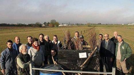Découverte de l'agroforesterie dans le Parc Loire-Anjou-Touraine, le 26 juin 2016 - Mission Bocage | Agriculture en Pays de la Loire | Scoop.it