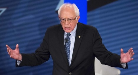 Why Socialists Can't Wait for Bernie to Lose   Ola AP US Government & Politics   Scoop.it