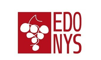 Edonys TV : la chaîne de la vigne et du vin va enfin émettre en France ! - Le blog d'iDealwine sur l'actualité du vin | Hôtellerie -restauration | Scoop.it